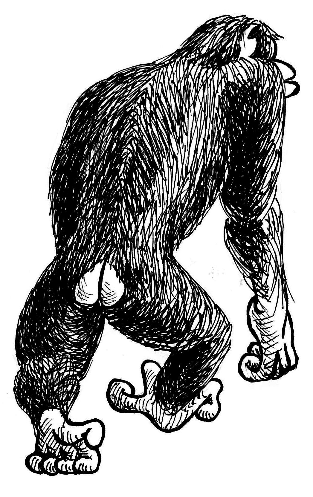 Monkey and Man